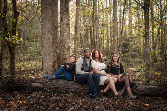 family portraits, smoky mountains, greenbrier trail, east tennessee